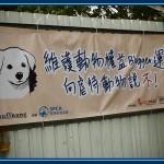 動物權益你要知!